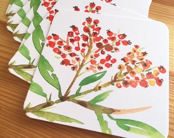 8 Watercolor Floral Coasters - Orange Firethorn Thick Paper Drink Coasters - Red Berry Drink Coasters - Decorative Floral Coasters