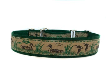 Wide 1 1/2 inch Adjustable Buckle or Martingale Dog Collar in Duck Duck