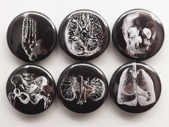Anatomical Fridge Magnets set gift for him male nurse physician skull foot lungs graduation geek button pins greys goth kitchen office staff