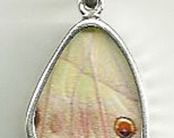Small Pearlescent Meadow Wanderer Butterfly Wing Pendant