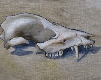 Opossum Skull - original daily painting by Kellie Marian Hill