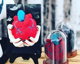 Anatomical Heart in Glass Dome