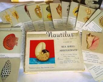 Vintage Nautilus Sea Shell Aristocrats Game by Dr. A. Gordon Melvin • Artist Jean Colton