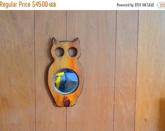 SALE 25% OFF vintage handmade owl mirror wall hanging / retro owl / wood wall hanging