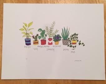 House Plants 9x12 Illustration Print