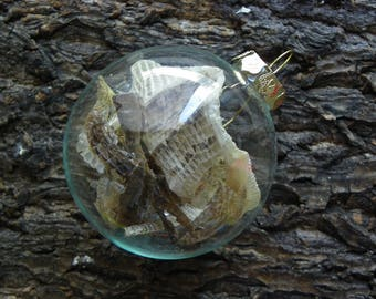 Cruelty Free Real Alligator Skin Sheds Glass Ornament.