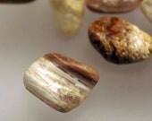 Bacon Opal from Utah - Tumbled Stone