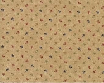 Gooseberry Lane Kansas Troubles Primitive Moda Cotton Quilt Fabric #9544 11
