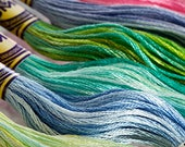 DMC Variations Thread, Embroidery Floss, Variations Floss, Cross Stitch Thread (choose your color) ART 417