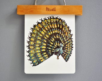 Over-Sized Mid-Century Peacock Flash Card
