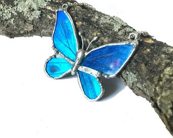 Blue Morpho Real Full Butterfly Necklace Sm