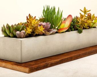 Concrete Planter, Concrete, Planter, Succulent Planter, Outdoor Planter, Indoor Planter, Herb Planter, Cement Planter