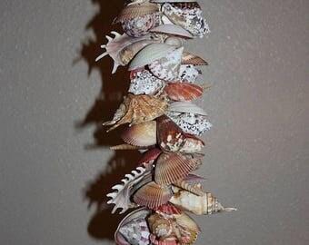 15% OFF Sea Shell Mobile, Free Shipping, All natural sea shell mobile garland, Hanging Sea Shell Home Decor, Beach Decor, Sea Shell Garland