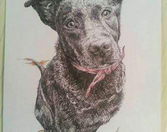 Custom Pet Portrait - Single Graphite Drawing 5 x 7 in.