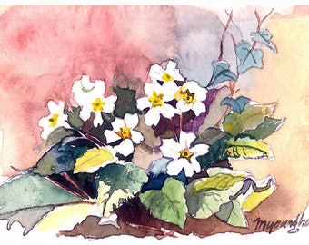 ACEO Limited Editions 1/25- little flower at the backyard, Flower art print, Art print of an ACEO original watercolor painted by Anna Lee