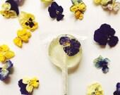 Pansy Flower Lollipops // Edible Flowers Lollipops // Summer Weddings // Spring Flower Lollipops // Pressed Flower Lollipops // 12 count