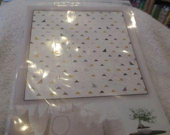 """Paper Pattern for a quilt called White and Light by Zen Chic for Moda 65"""" square"""