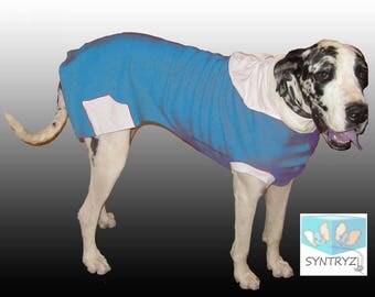Turquoise Blue sweatshirt fabric Custom Dog Hoodies Sizes xxsmall - 3Xlarge