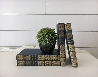 Vintage Book Collection . Blue & Gold Books . Fixer Upper Decor . Farmhouse Cottage Shelf Accents