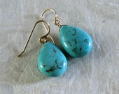 Turquoise Dangle Earrings...