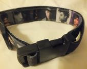 Prince no 2 pet collar 13 - 19 inches (black webbing)