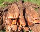 SALE!! Authentic Natural Coconut Bark/Fibers. Polynesian Costume Supply .