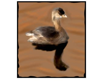 Cute Grebe Print on Canvas For Your Home or business. Mounted and ready to hang, plus fast and free shipping