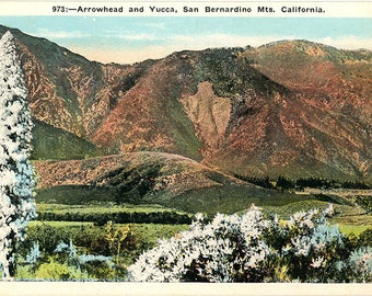 San Bernardino Mountains Arrowhead & Yucca California Vintage Postcard (unused)