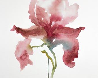 iris no. 15 . original watercolor painting