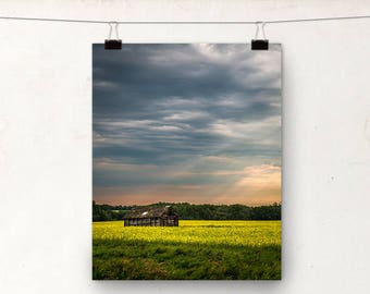 Landscape Photography, Canola Field, Alberta Landscape, Rustic Photo