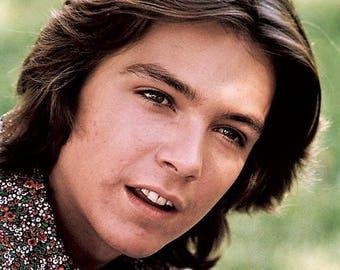 David Cassidy , 1970's