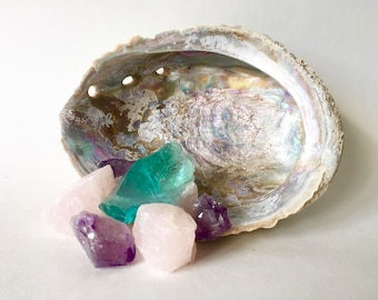 XL Abalone Crystal Shell