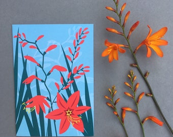 Crocosmia | Greeting Card | Coastal Garden Flowers by Alison Bick note card for gardener