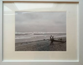 Cape Cod National Seashore (black and white, frame and matte included)