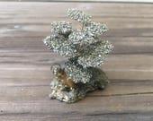 Pyrite Money Tree • Prosperity • Reiki • Money Charm • Pyrite Crystals