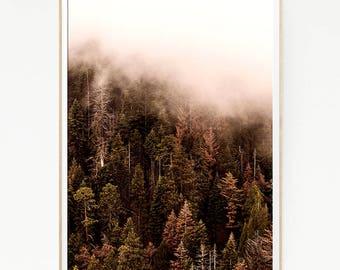 Pine Trees Mountains Print Poster Forest Wall Decor Nordic Art Scandinavian Monochrome Nature Wilderness Minimalist Snow Wild Pink 1058