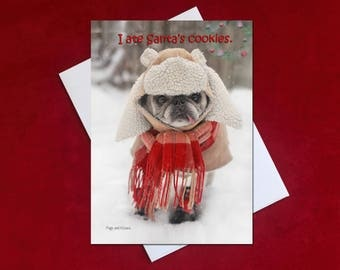 NEW Funny Christmas Card - I Ate Santa's Cookies -Pug Christmas Card - 5x7