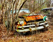 1956 Rusty Teal Dodge in the Woods Photograph