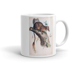 Coffee Mug - Ceramic - Pen-tailed Treeshrew Coffee Mug