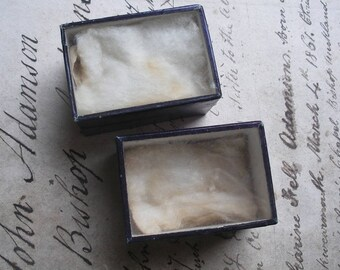 2 antique museum specimen boxes, glass lids