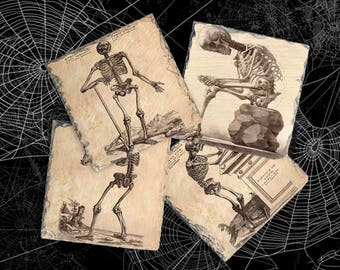 Vintage Anatomy Photo Gift Idea, Skeleton Bones Coaster Set, Hostess Gift, Halloween Hostess Present, Slate Drink Coaster Set of Four
