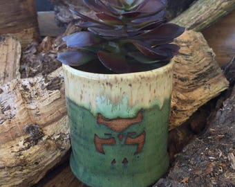 Succulent/Cactus Planter - Irridescent Green - Owl - Wheel Thrown Pottery