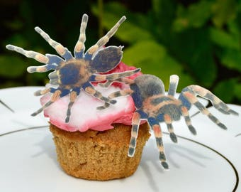 Edible Spiders Eeek! Creepy! x18 Spider Halloween Toppers Wafer Rice Paper Cake Decoration Cupcake Cookie Day of the Dead Gothic Wedding