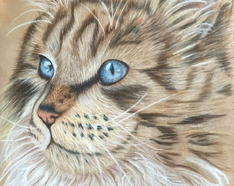 Pet Portraits; Dogs; Cats; Exotic Animal Portraits;