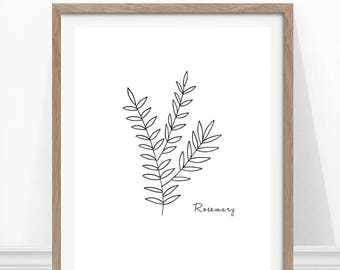 Rosemary Print, Kitchen Herb Print, Hand Drawn Herb, Kitchen Wall Art, Herbs and Spices
