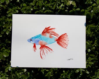WATERCOLOR fish, Original watercolor or printing, watercolor painting fish size A4, watercolor fish, blue and red, watercolor fish
