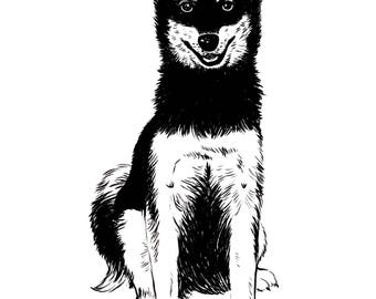 Husky Puppy — Art Print