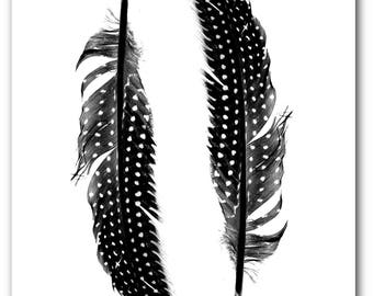 Feather Print, Black and White Photography, Feather Art, Bird Feathers, Modern Nature Decor, 8 x 10 inches, Unframed