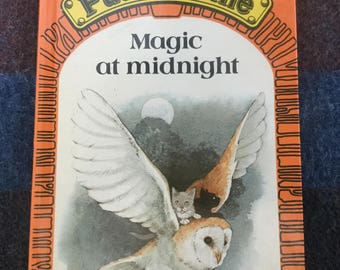 Puddle Lane Ladybird book - Magic at Midnight