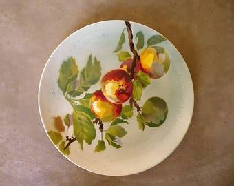 Choisy Le Roy iron earthenware plate - Terre de fer - French tableware - Fruit decoration